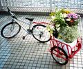 タウンカートきゃら 自転車で牽けるトレーラー型リヤカー