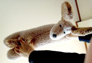 腹筋・筋トレがんばってワン!! 足を押さえてくれる可愛いぬいぐるみです。